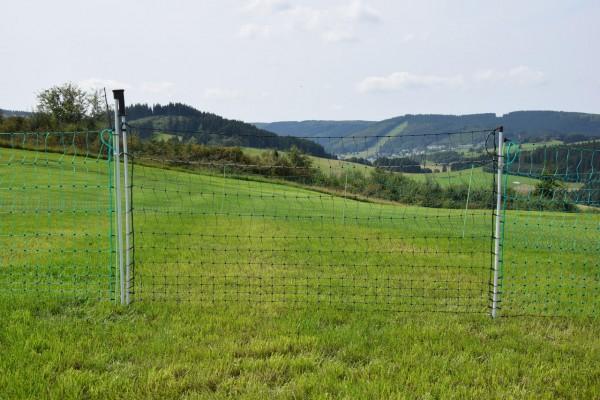 Göbel Euro-Netz-Tor Jumbo 112/2 - 1,20 m breit