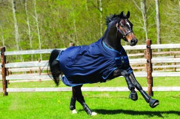 Horseware Amigo Bravo 12 Lite - 100g