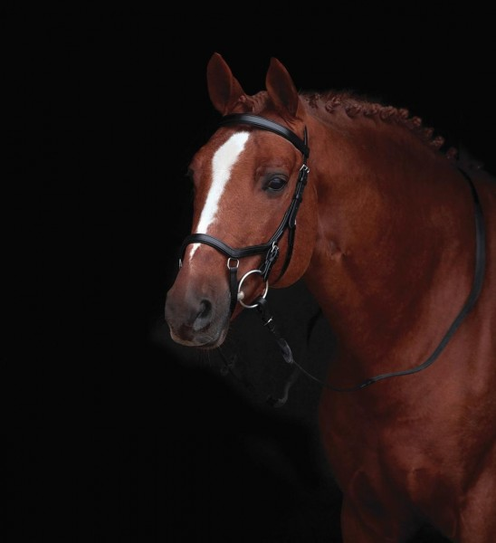 Horseware Rambo Micklem Original Competition