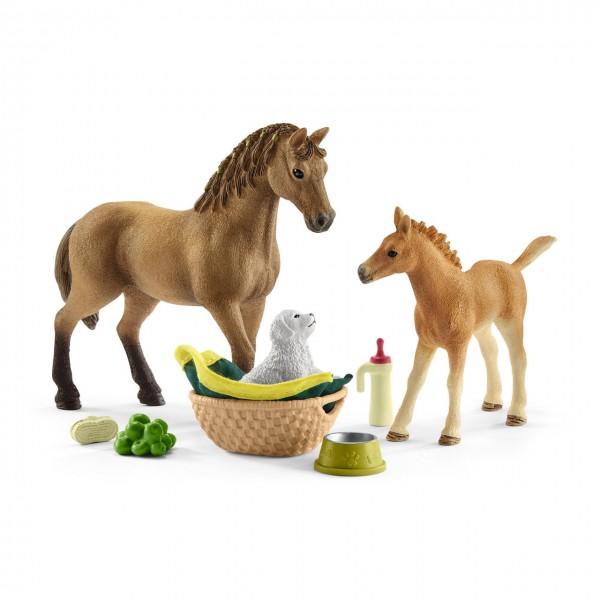 Schleich Horse Club Sarahs Tierbaby-Pflege