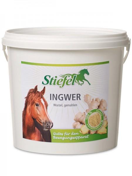 Stiefel Ingwer - 1kg