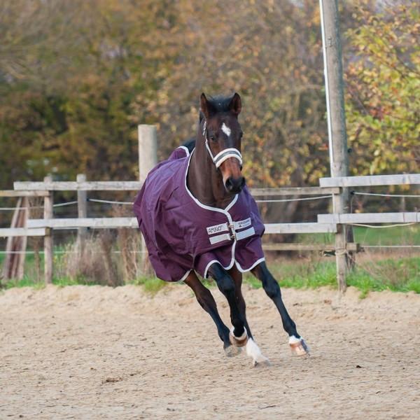 Horseware Amigo Hero 600D -